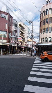 西武沿線ハイキング(浅草寺&花やしき)