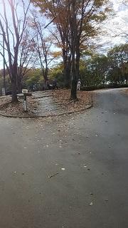 西武沿線ハイキング(狭山湖一周・前編)