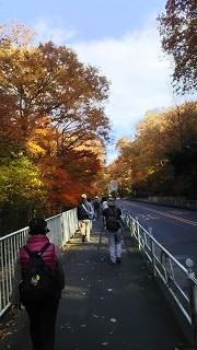 西武沿線ハイキング(狭山湖一周ウォーク<後編>)